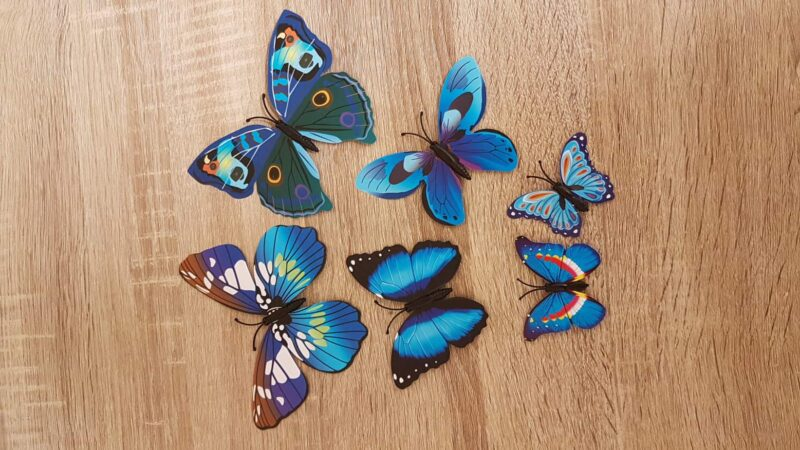 Magneetvlinder blauw